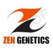 zen-06