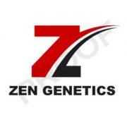 zen-07