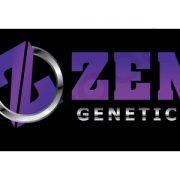 zen-09